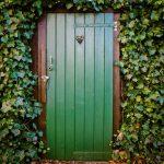 porte d'entrée bois vert